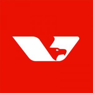 OmniVision-logo-300x300